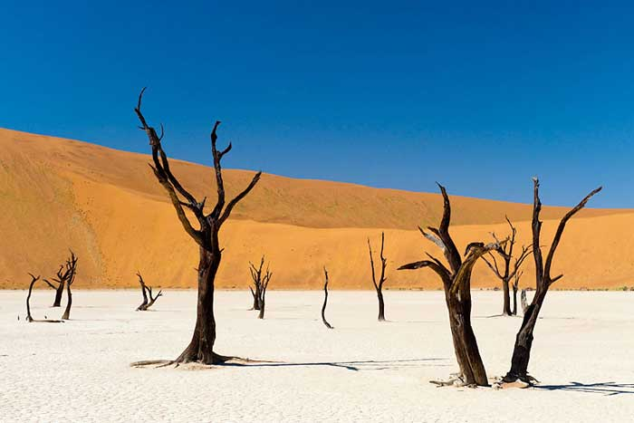 Namib-Naukluft-Park,-Namibi