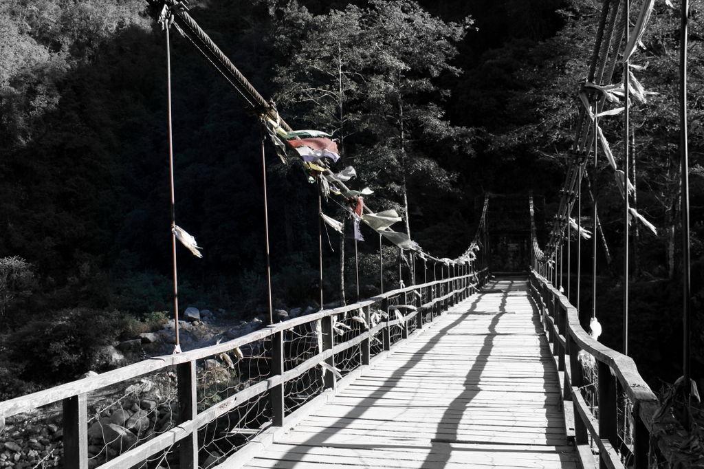 bridgw-at-srikhola
